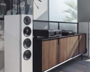 Definitive-Technology-D15-Speaker-Main-Picture.