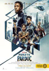 Poster del film Black Panther