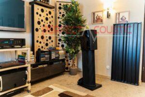 diffusore acustico collocato nella sala cinema (4)