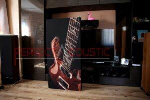progettazione acustica della sala espositiva hi-fi con assorbitori acustici (3)